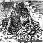 "Morbid Flesh ""Dying Lapidation"""