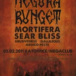 "Avant-Garde Night I; Katowice ""Mega Club"", 05.02.2011"