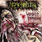 "Nekrofilth ""Worship Destruction"""