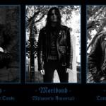 Forteresse i ich czwarty album