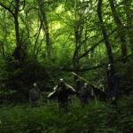 Stonehaven i ich nowy krążek