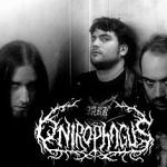 Onirophagus ma kontrakt