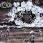 """Ectovoid """"Fractured in the Timeless Abyss"""""""
