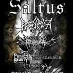 Szesnastolecie Saltus