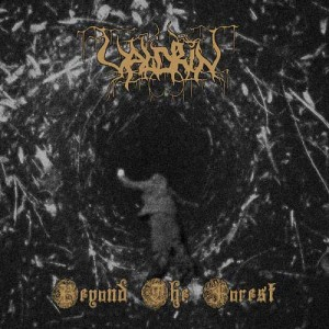 Valdrin Beyond the Forest