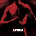 "Godflesh ""A World Lit Only by Fire"""