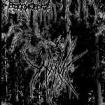 Premiera splitu Wounds / Ärid / Black Wilderness