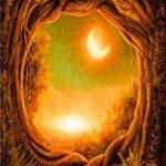 Kompilacja od Druadan Forest