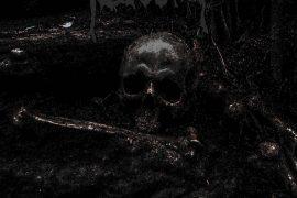 Necrochaos > Crawling Through Cadavers