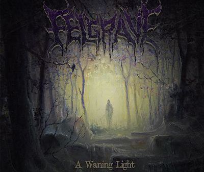 Felgrave > A Waning Light